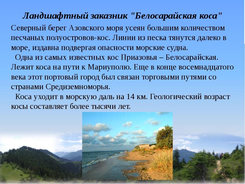 """Ландшафтный заказник """"Белосарайская коса"""" Северный берег Азовского моря усея..."""