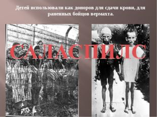 Детей использовали как доноров для сдачи крови, для раненных бойцов вермахта.