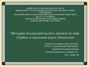 Методика исследовательского проекта по теме «Грибы» в школьном курсе «Биолог