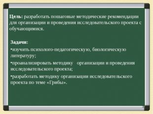 Цель: разработать пошаговые методические рекомендации для организации и прове