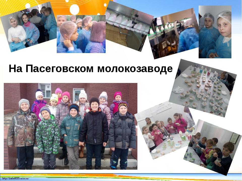 На Пасеговском молокозаводе http://linda6035.ucoz.ru/