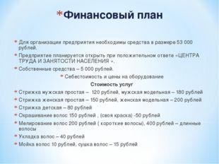 Финансовый план Для организации предприятия необходимы средства в размере 53