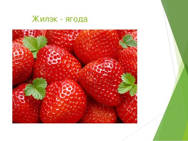 Жилэк - ягода