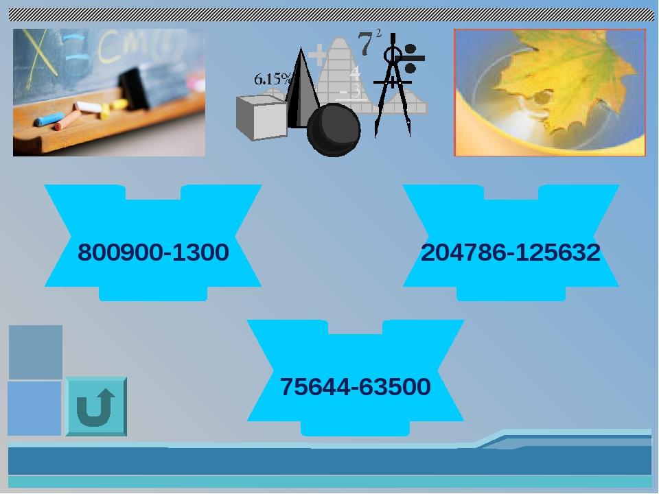 799600 800900-1300 79154 204786-125632 12144 75644-63500