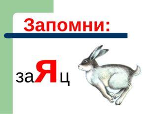 Запомни: заяц