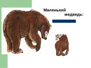 Маленький медведь: