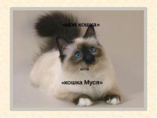 «моя кошка» «кошка Муся» «=»