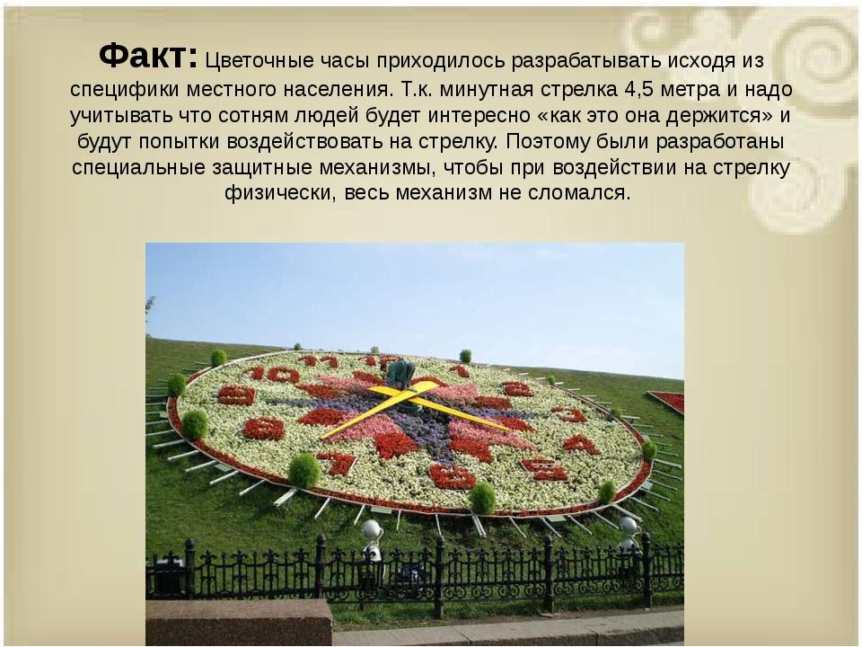 Факт:Цветочные часы приходилось разрабатывать исходя из специфики местного н...