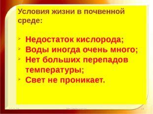11.11.16 http://aida.ucoz.ru Условия жизни в почвенной среде: Недостаток кисл