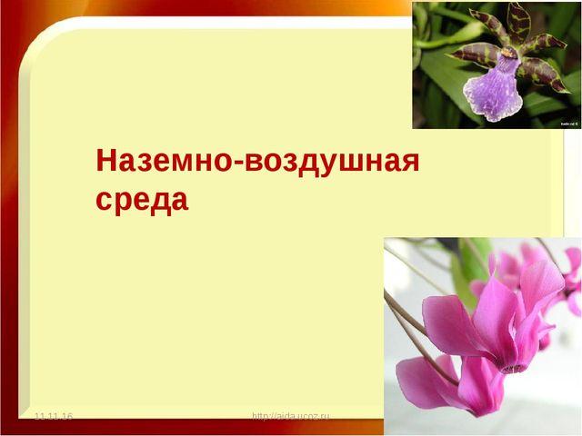 11.11.16 http://aida.ucoz.ru Наземно-воздушная среда