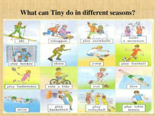 What can Tiny do in different seasons?