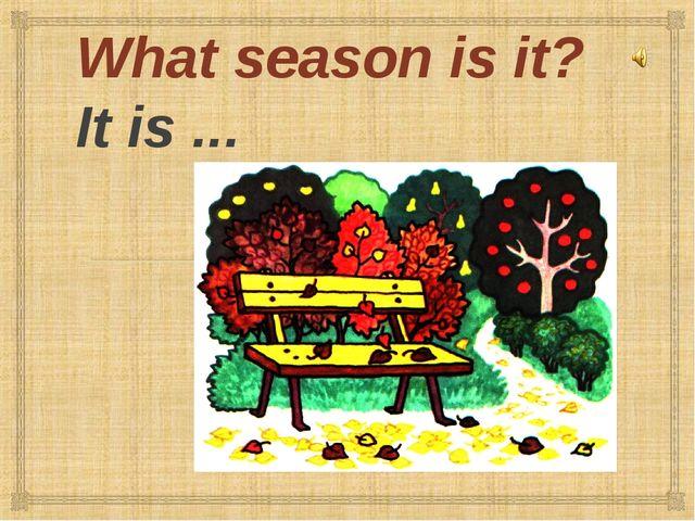 What season is it? It is ...