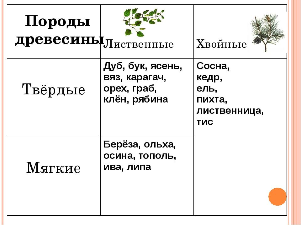 Породы древесины Лиственные Хвойные Твёрдые Дуб,бук, ясень, вяз, карагач, оре...