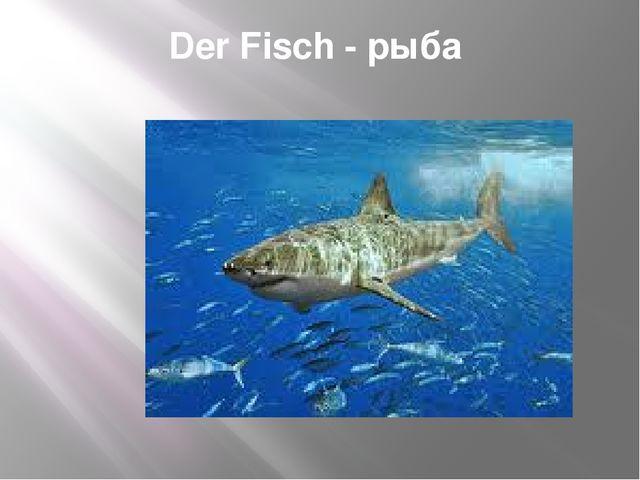 Der Fisch - рыба