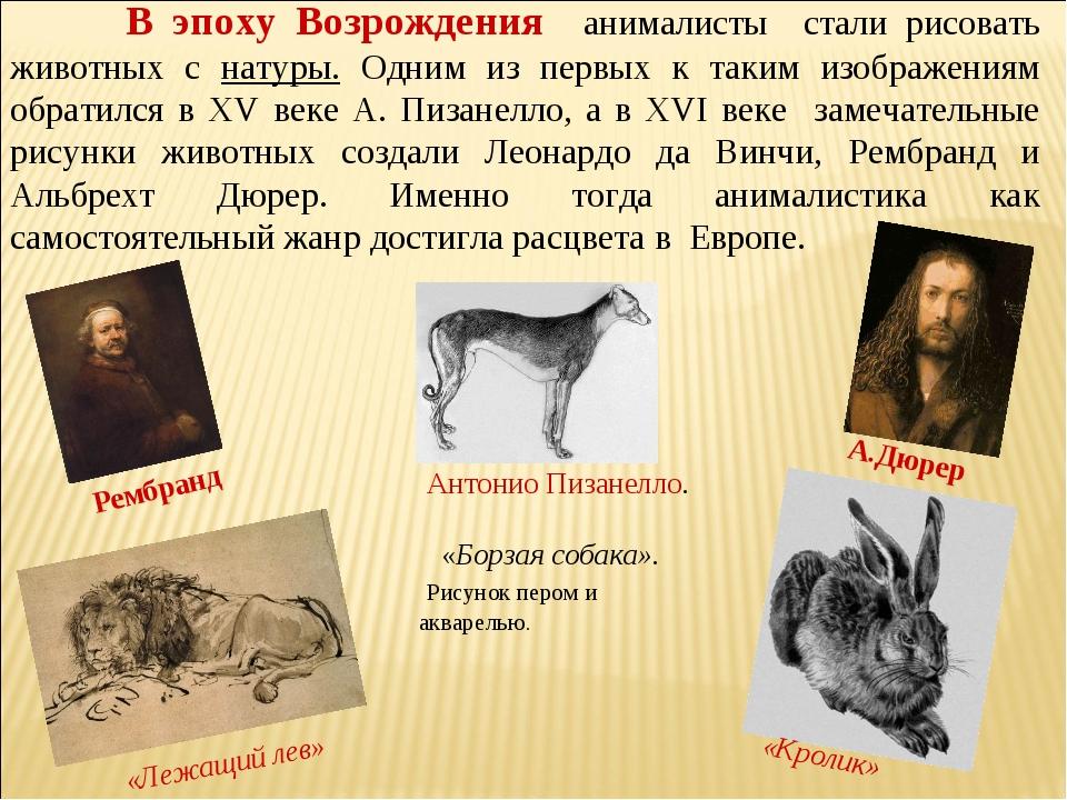 В эпоху Возрождения анималисты стали рисовать животных с натуры. Одним из пе...