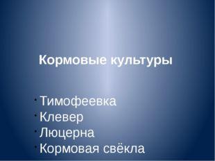 Кормовые культуры Тимофеевка Клевер Люцерна Кормовая свёкла
