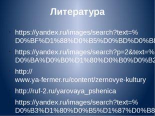 Литература https://yandex.ru/images/search?text=%D0%BF%D1%88%D0%B5%D0%BD%D0%B
