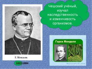 Чешский учёный, изучал наследственность и изменчивость организмов. 1822-1884