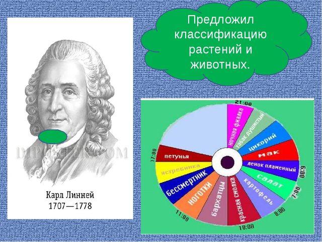 Предложил классификацию растений и животных.