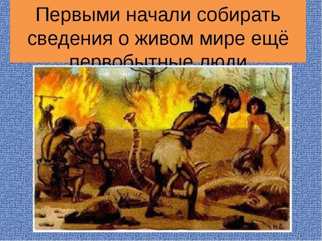 Первыми начали собирать сведения о живом мире ещё первобытные люди
