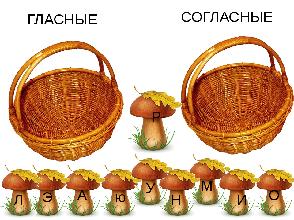 О А У Л Э И М Н Р ю ГЛАСНЫЕ СОГЛАСНЫЕ