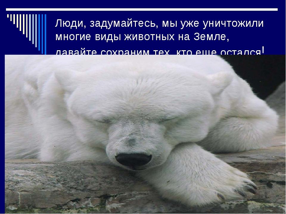 Люди, задумайтесь, мы уже уничтожили многие виды животных на Земле, давайте с...