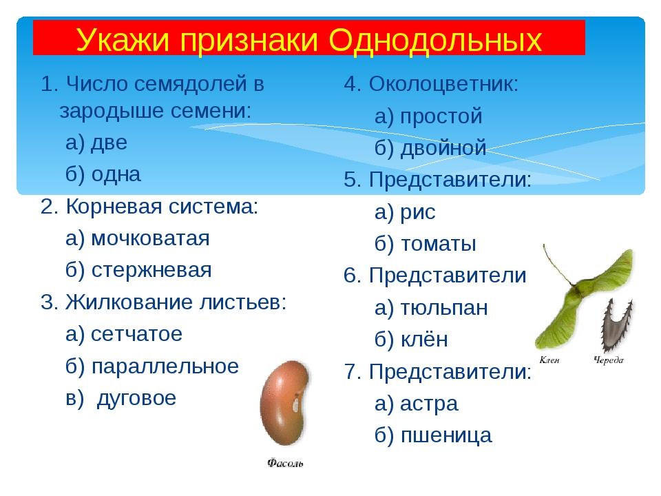 Укажи признаки Однодольных 1. Число семядолей в зародыше семени: а) две б) од...