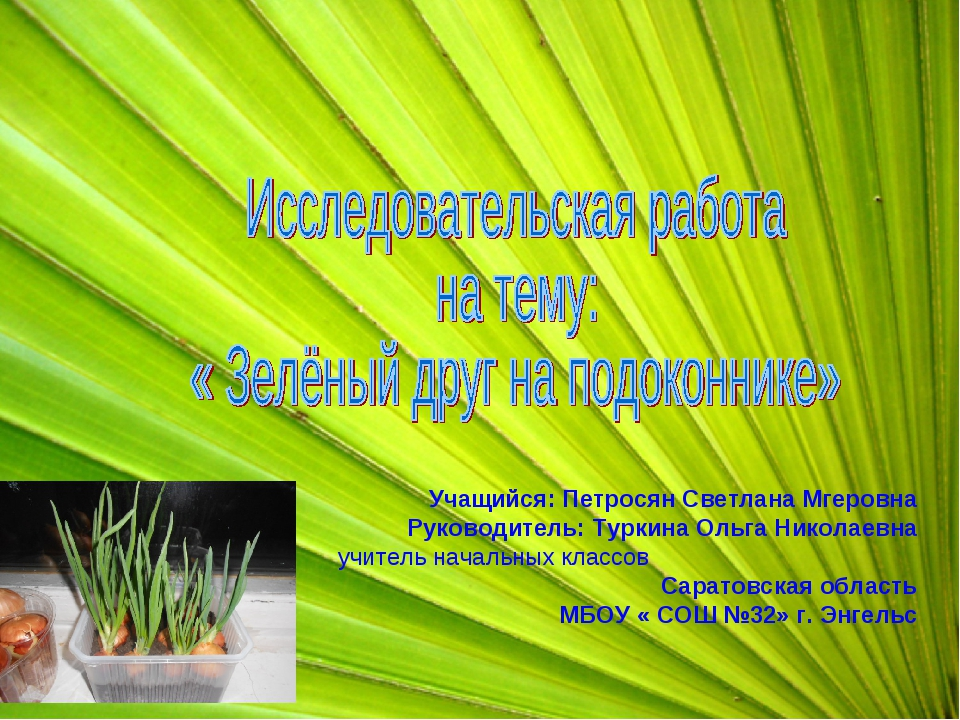 Учащийся: Петросян Светлана Мгеровна Руководитель: Туркина Ольга Николаевна у...