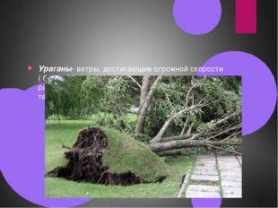 Ураганы- ветры, достигающие огромной скорости ( более 30м/с). Ураган обладае