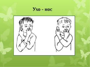 Ухо - нос