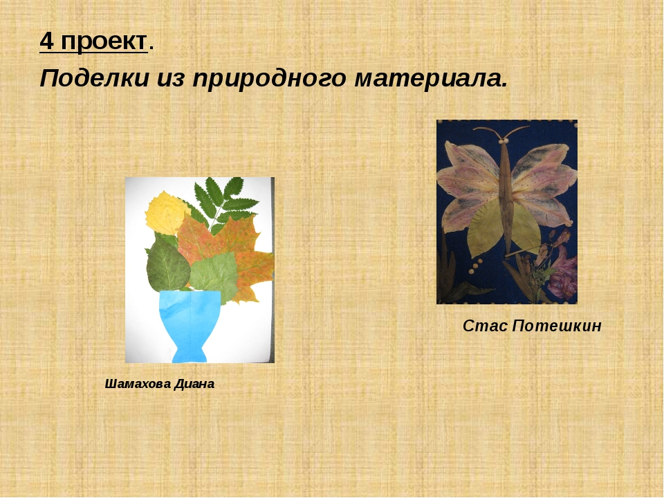 4 проект. Поделки из природного материала. Стас Потешкин Шамахова Диана