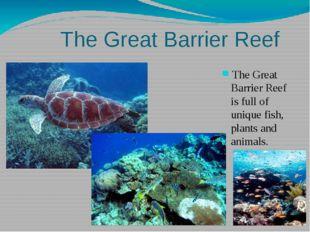 The Great Barrier Reef The Great Barrier Reef is full of unique fish, plants