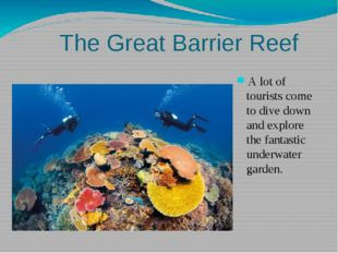 The Great Barrier Reef A lot of tourists come to dive down and explore the f