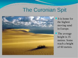 The Curonian Spit It is home for the highest moving sand in Europe. The aver