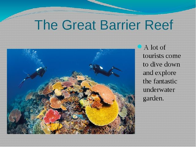 The Great Barrier Reef A lot of tourists come to dive down and explore the f...