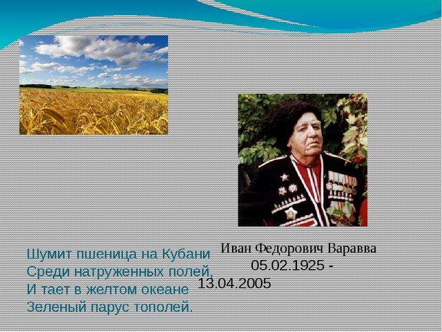 Шумит пшеница на Кубани         Среди натруженных полей, И тает в же...