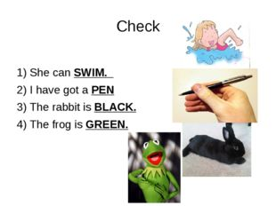 Check 1) She can SWIM. 2) I have got a PEN 3) The rabbit is BLACK. 4) The fro
