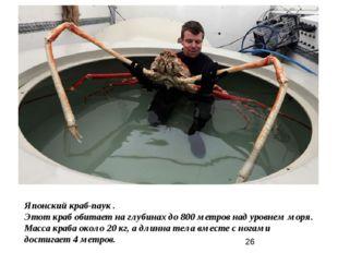 Японский краб-паук . Этот краб обитает на глубинах до 800 метров над уровнем