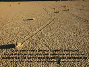 Движущиеся камни Долины Смерти. Вбезлюдной американской долине происходит ун
