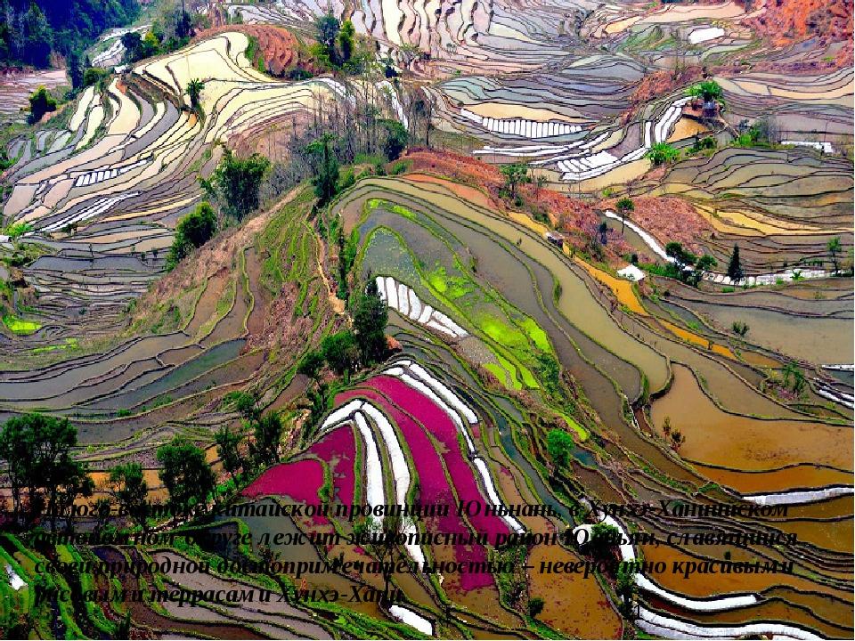 На юго-востоке китайской провинции Юньнань, в Хунхэ-Ханиийском автономном окр...