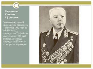 Ворошилов Климент Ефремович Главнокомандующий партизанским движением (с сентя