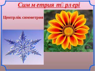 Симметрия түрлері Центрлік симметрия