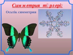Симметрия түрлері: Осьтік симметрия