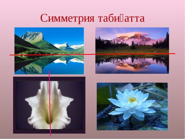 Симметрия табиғатта