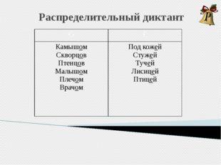 Распределительный диктант О Е Камышом Скворцов Птенцов Малышом Плечом Врачом