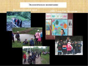 Экологическое воспитание Изучаем родной край 2013 год-Год Экологии