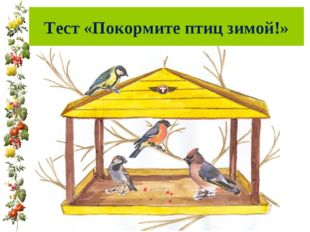 Тест «Покормите птиц зимой!»