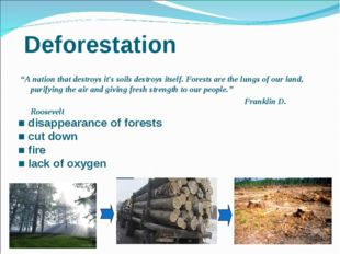 "Deforestation ""A nation that destroys it's soils destroys itself. Forests ar"