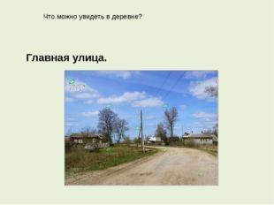 Что можно увидеть в деревне? Главная улица.
