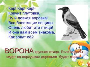 ВОРОНА-крупная птица. Если вороны сидят на верхушках деревьев- будет мороз. К